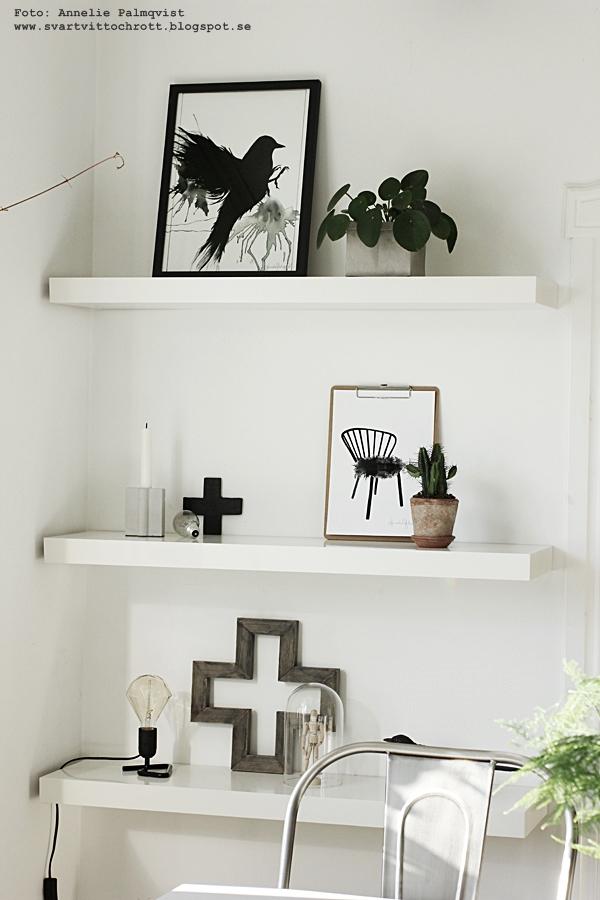 hylla, vit, vitt, vita, skata, handsnidad, snidad, snidade, posters, poster, print, prints, tavla, tavlor, svart och vitt, kors, träkors, lampa, netto, diy, kaktus, kaktusar, stol på tavla, motiv stolar, svart fågel, fåglar, konsttryck, annelies design interior, anneliesdesign, webbutik, webshop, webbutiker, nettbutikk, nettbutikker, plakat, plakater,
