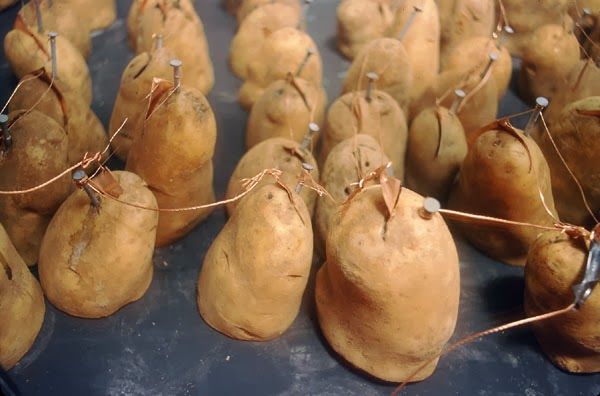 Daya tahan batere dari kentang