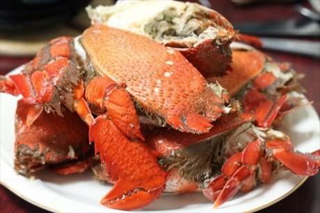 Huỳnh Đế Crab in Phú Yên Province (Cua Huỳnh Đế)