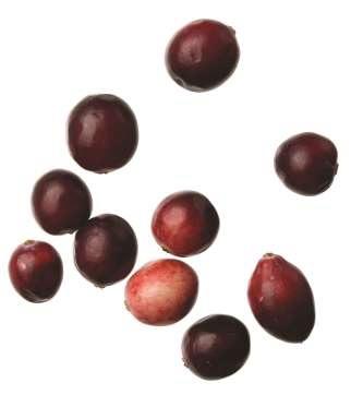 Nam việt quất (Cranberry)
