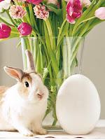 Великденска украса за дома - зайче