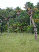 Reserva Natural La Pedregoza