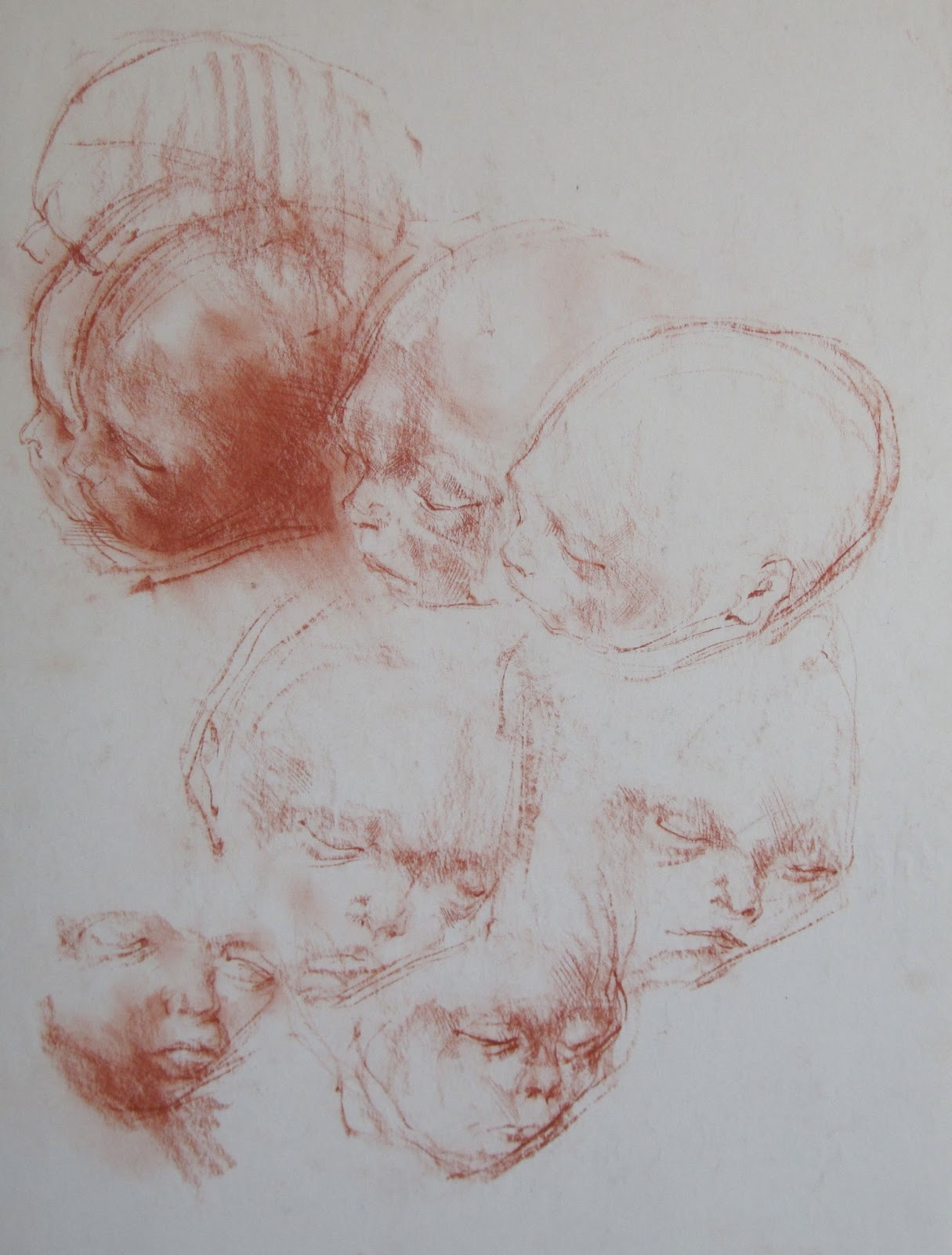 Steven Rhude Paintings Anatomy Still An Option