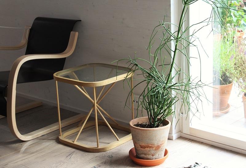 aallon huonekaluja ja viherkasvi