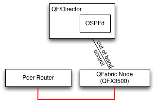 Director connected to edge node and peered with another switch
