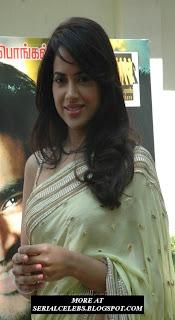 Sameera Reddy in low hip saree