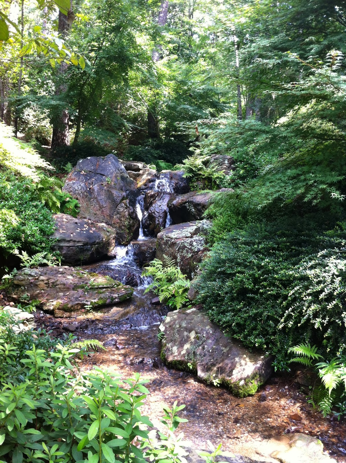 Garvan Woodland Gardens Hot Springs Arkansas The