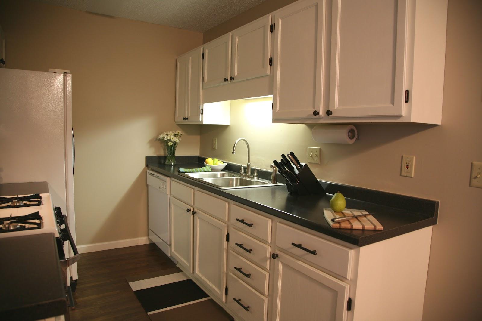 http://2.bp.blogspot.com/-DYWiAUTv5HM/T6IJdbm_ahI/AAAAAAAAAB8/rmBC20obyGY/s1600/Kitchen_3.jpg