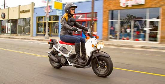 2014 Honda Ruckus : Features, Price and Specs - The New Autocar