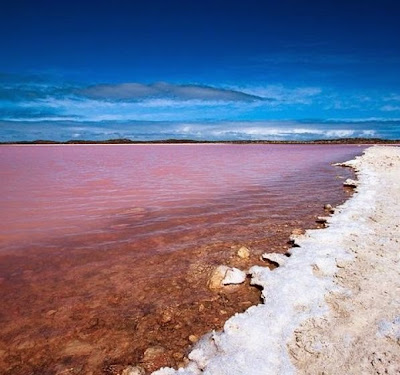 Lake Hillier nature art pink lake in Australia