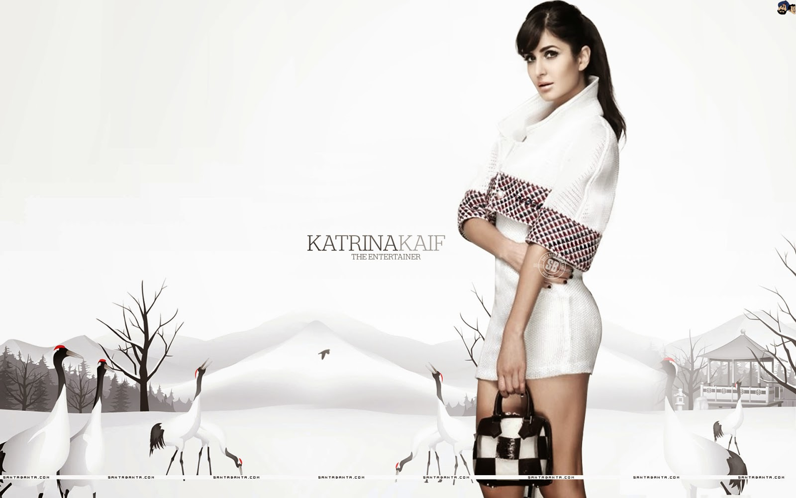 Katrina Kaif Seksi Wallpaper 13