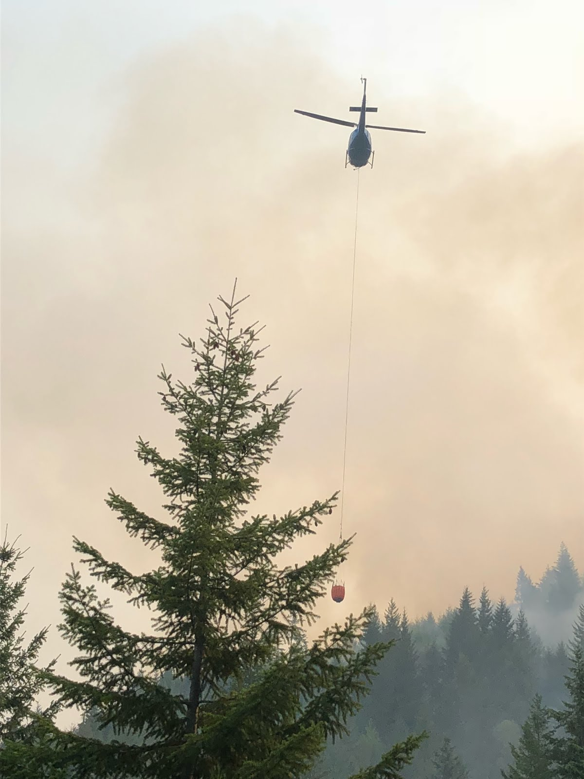 Firefighters battle Bear Springs Fire in southern Oregon