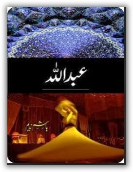 Abdullah Complete Novel By Hashim Nadeem Pdf