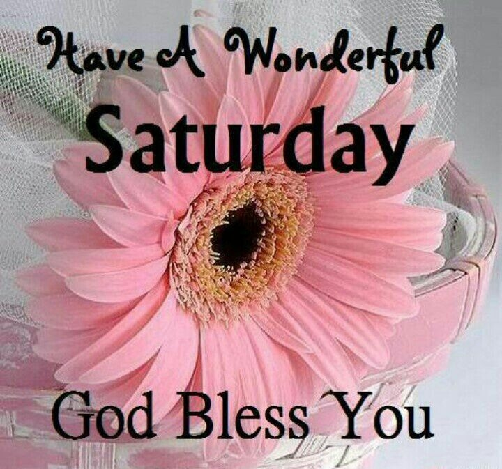 Good Morning Saturday SMS