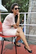 Pooja Jhaveri latest glam pics-thumbnail-9