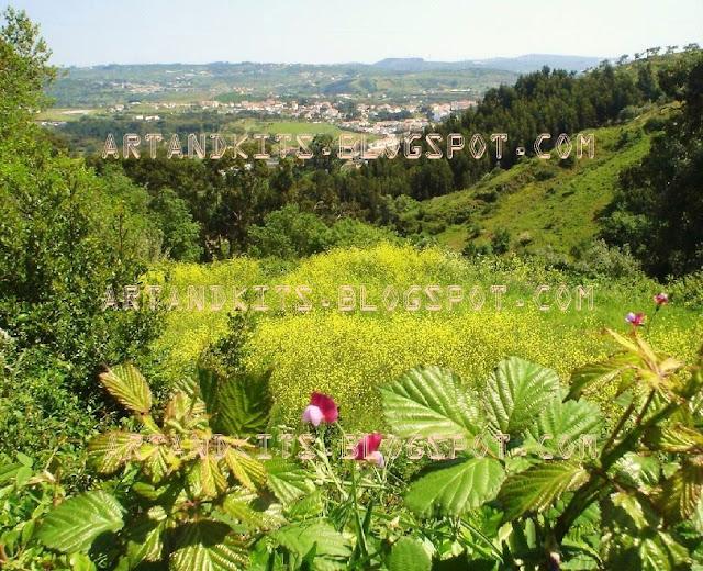 Paisagem, fotos de paisagem, imagens de paisagem / Landscape, landscape photos, landscape images