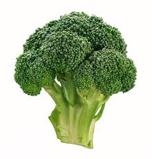 broccoli green colored vegetable