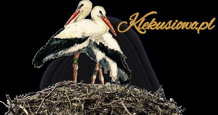 Klekusiowo- gniazdo bocianów