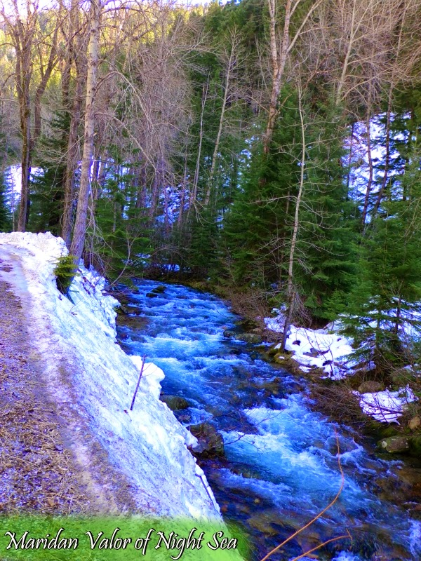 I went for a drive and what did I spy...a beautiful little river we drove past. photo by Maridan Valor.