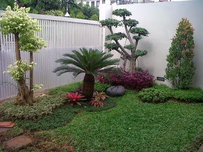 Tukang Taman Jogja Jawa Tengah Taman Minimalis