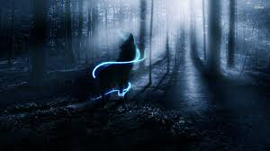 El Caso Wolf