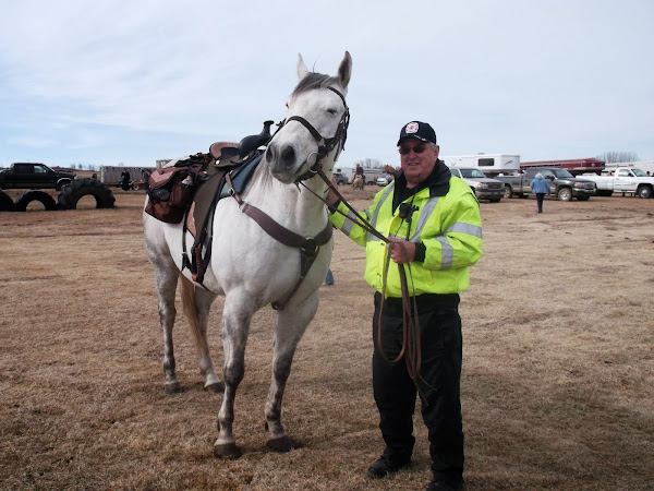 Security helping with the horses