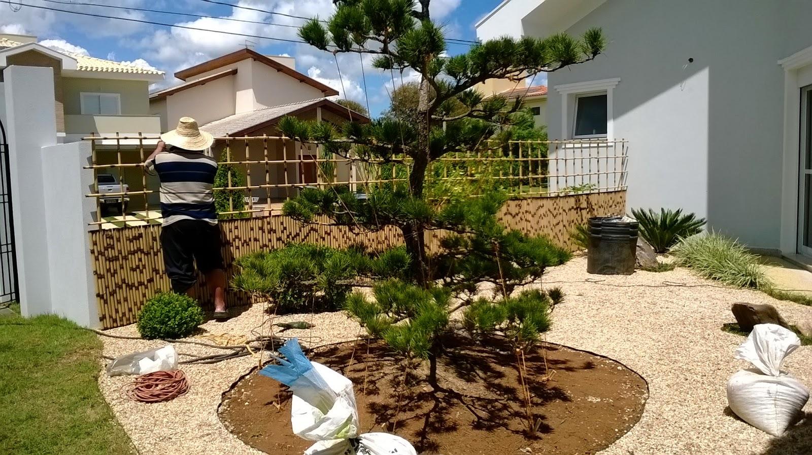 manutenção de jardim, poda pinheiro negro, kuromatsu, jardim japones