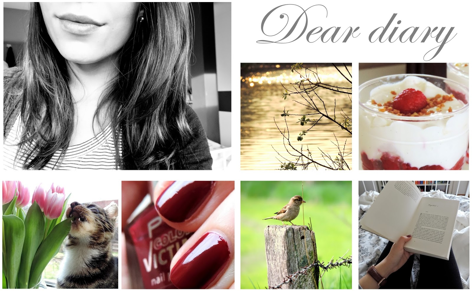 http://deardiarybrn.blogspot.de/