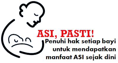 ASI Makanan Bayi Agar Cerdas
