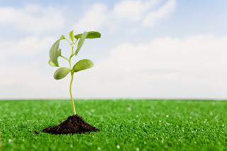 Seu crescimento espiritual
