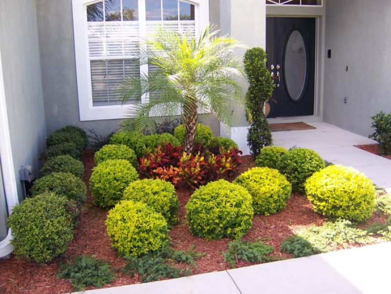 Do it yourself gardening kaye landscaping fresh ideas for Front yard landscaping plants and shrubs