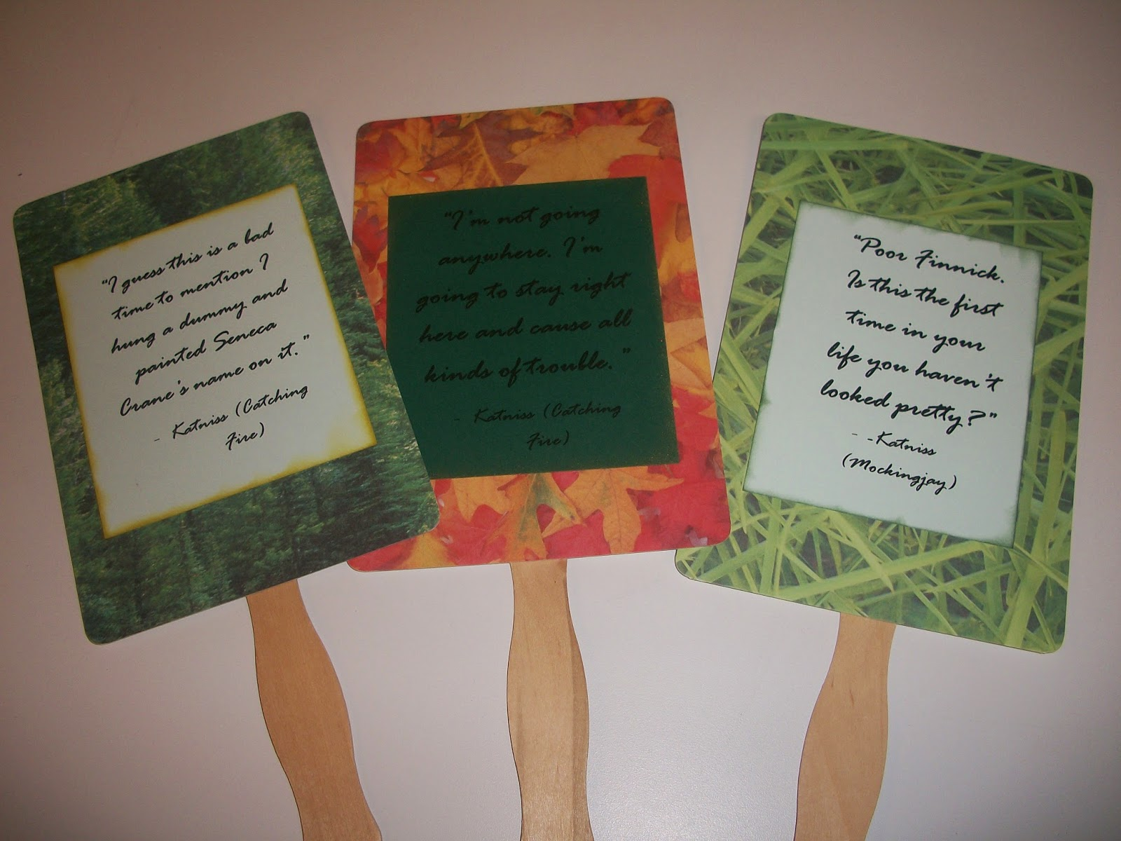 Quotes About Hunger Weird Life Of V Hunger Games 16Th Birthday Party  Favors & Games
