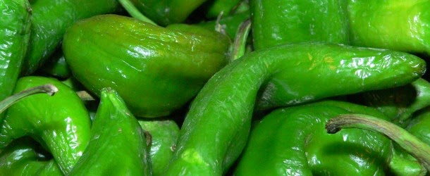 Yumz the Word: New Mexican Pork Chile Verde