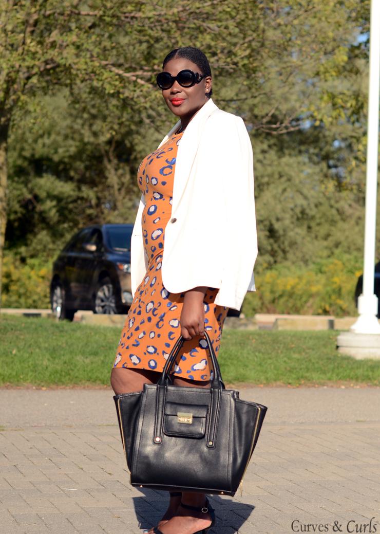 3.1 phillip lim handbags; 3.1 phillip lim dress; 3.1 phillip lim animal print dress; Canadian fashion blog; target Canada; plus size bloggers; plus size dress phillip lim; More on www.mycurvesandcurls.com