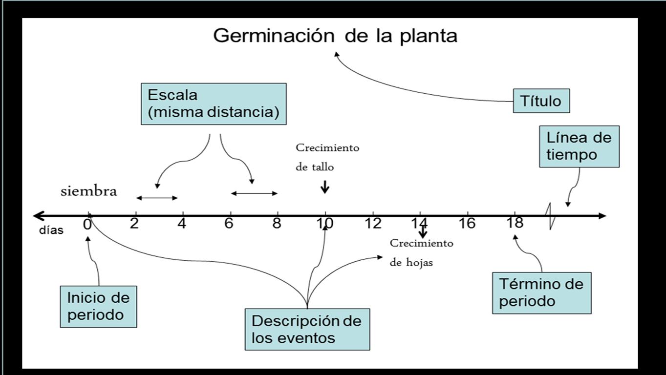elemento linea tiempo: