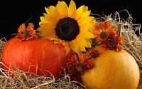 Autumn Harvest Desktop Wallpapers4