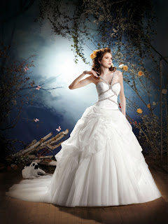 Kelly Star 2013 Spring Bridal Wedding Dresses
