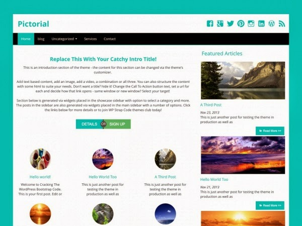 Pictoorial Free WordPress theme 2014