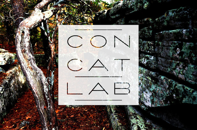 high contrast nature photo with white concatlab 3x3 grid logo