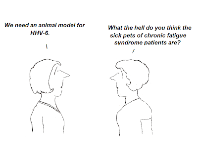 cartoon, pets, animal model, tom glass, hhv-6, zoonose