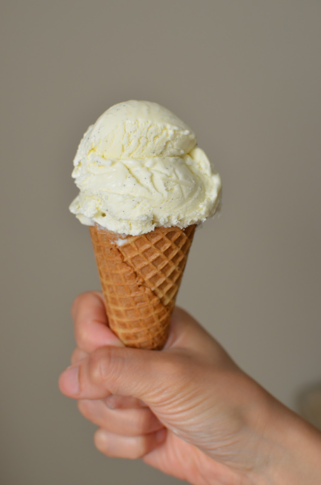 Mr Softee-Style Vanilla Bean Soft Serve Recipe — Dishmaps