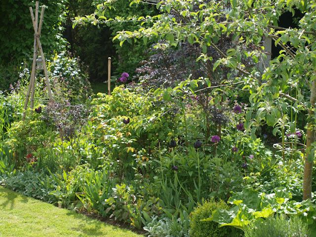 Frodige bede i den nemme og moderne have