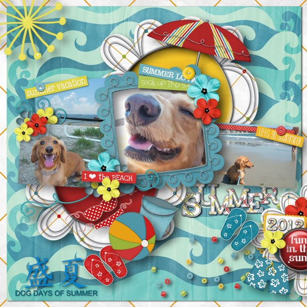 DSB  Dog days of Summer