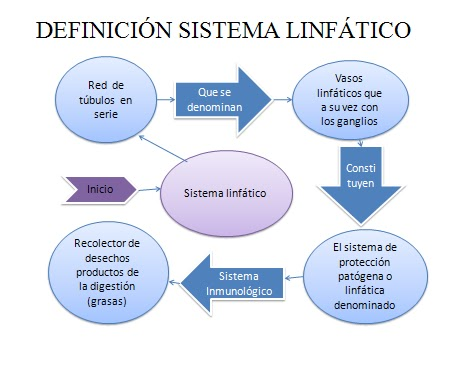 Drenaje Linfatico Manual: 2011