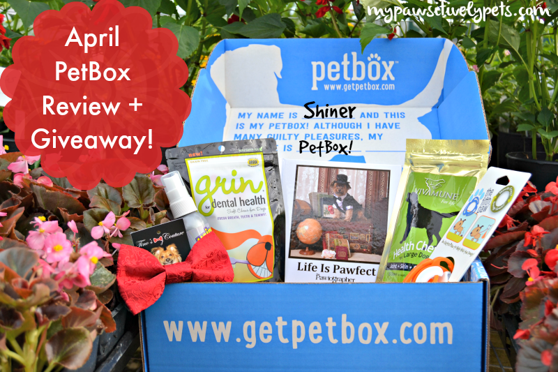 April #PetBox Review and Giveaway
