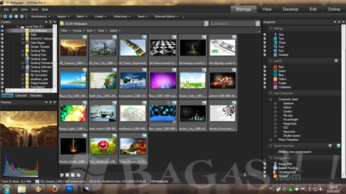 ACDSee Pro 5.0 Build 110 Full Patch - BAGAS31.com