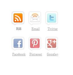 subscribe icons widget wordpress blogger