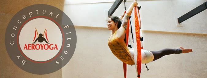 acro aerial yoga pose