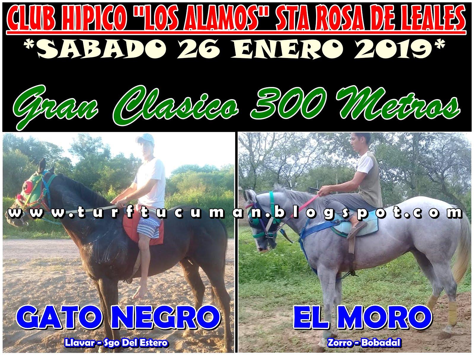GATO NEGRO VS EL MORO
