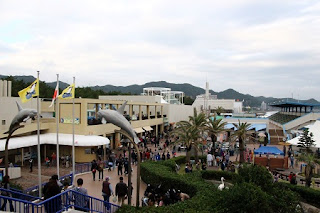 Kamogawa SEA WORLD